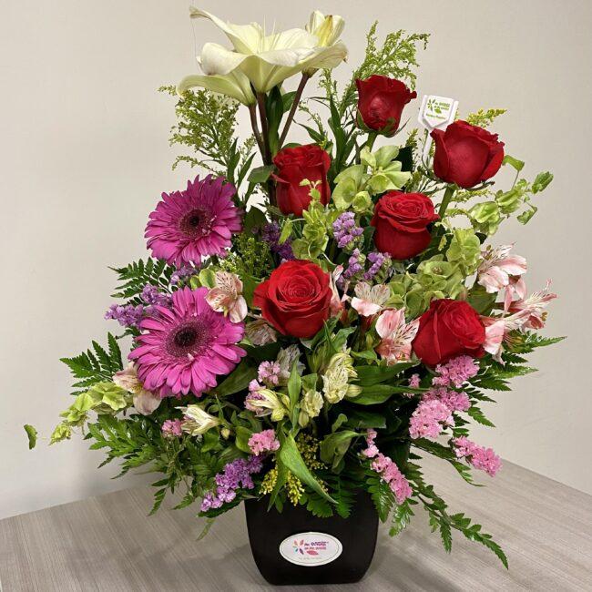 6 rosas con fiucha